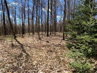 Terrain à vendre à Saint-Sauveur, Laurentides, Chemin du Lac-des-Becs-Scie Ouest, 10032137 - Centris.ca