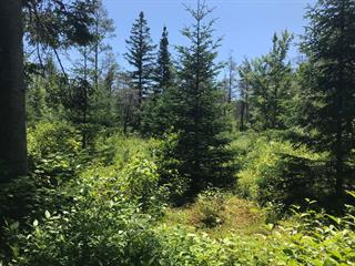 Terrain à vendre à Notre-Dame-des-Bois, Estrie, 272, Route de l'Église, 26405099 - Centris.ca