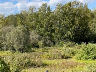 Terrain à vendre à La Malbaie, Capitale-Nationale, 2e Rang, 23379078 - Centris.ca
