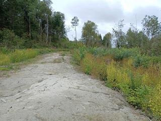 Terre à vendre à Grand-Remous, Outaouais, Chemin  Bourque, 12536679 - Centris.ca