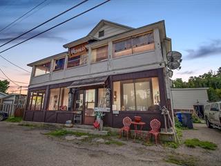 Duplex à vendre à Kipawa, Abitibi-Témiscamingue, 605 - 611, Chemin de la Baie-de-Kipawa, 12443556 - Centris.ca