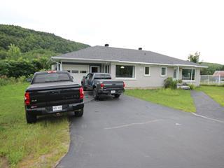 Maison à vendre à Shawinigan, Mauricie, 2341, Chemin de Saint-Jean-des-Piles, 14599979 - Centris.ca