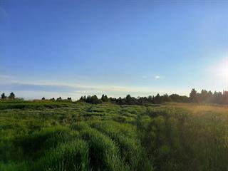 Terre à vendre à Preissac, Abitibi-Témiscamingue, Avenue du Lac, 11808631 - Centris.ca