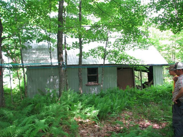 Terre à vendre à Sainte-Catherine-de-la-Jacques-Cartier, Capitale-Nationale, Chemin  Taché, 10086928 - Centris.ca