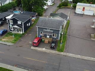 House for sale in Larouche, Saguenay/Lac-Saint-Jean, 697, Rue  Gauthier, 28335518 - Centris.ca