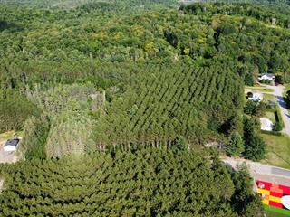 Terrain à vendre à Notre-Dame-de-Pontmain, Laurentides, Chemin  Constantineau, 26978848 - Centris.ca