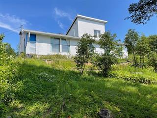 Maison à vendre à Sept-Îles, Côte-Nord, 68, Chemin du Lac-Daigle, 28996022 - Centris.ca