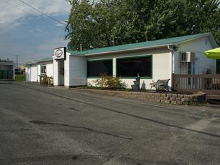 Bâtisse commerciale à vendre à Danville, Estrie, 3, Chemin du Lac, 18998790 - Centris.ca