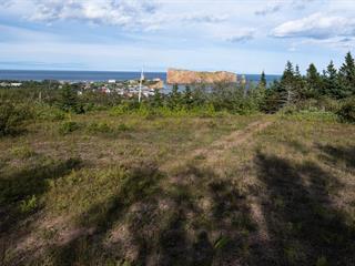 Terre à vendre à Percé, Gaspésie/Îles-de-la-Madeleine, Route des Failles, 15287111 - Centris.ca