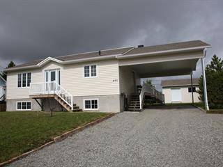 Maison à vendre à Amos, Abitibi-Témiscamingue, 491, Rue  Grenier, 26152010 - Centris.ca