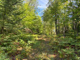 Lot for sale in La Minerve, Laurentides, Chemin  Preston, 17165128 - Centris.ca
