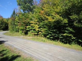 Terrain à vendre à Sainte-Anne-des-Lacs, Laurentides, Chemin des Capelans, 26230379 - Centris.ca