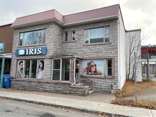 Bâtisse commerciale à vendre à Shawinigan, Mauricie, 573, 5e Rue, 16989807 - Centris.ca