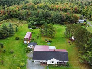 Maison à vendre à Saints-Martyrs-Canadiens, Centre-du-Québec, 37, Rue  Principale, 20216483 - Centris.ca