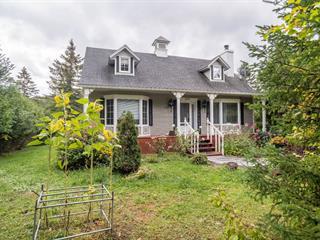 Maison à vendre à Saint-Sauveur, Laurentides, 200, Chemin du Domaine-Filion, 22824446 - Centris.ca