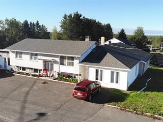 Maison à vendre à Sainte-Perpétue (Chaudière-Appalaches), Chaudière-Appalaches, 436, Rue  Principale Sud, 17648471 - Centris.ca