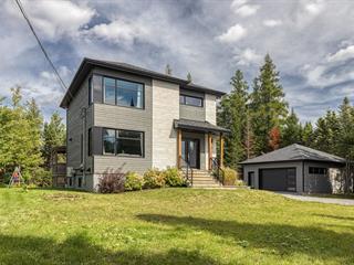 House for sale in Sainte-Catherine-de-la-Jacques-Cartier, Capitale-Nationale, 160, Rue de l'Athyrium, 22037717 - Centris.ca