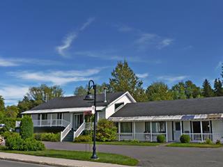 Triplex à vendre à Saint-Donat (Lanaudière), Lanaudière, 237 - 247A, Avenue du Lac, 14902332 - Centris.ca
