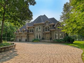 Maison à vendre à L'Île-Cadieux, Montérégie, 52, Chemin de l'Île, 24395136 - Centris.ca