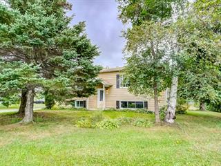 House for sale in Chénéville, Outaouais, 49, Rue  Montfort, 18410045 - Centris.ca