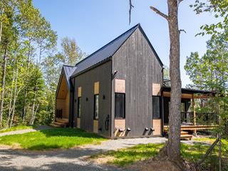 Maison à vendre à Petite-Rivière-Saint-François, Capitale-Nationale, 22, Chemin  Alfred-Pellan, 25065249 - Centris.ca