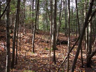 Terrain à vendre à Saint-Barthélemy, Lanaudière, Chemin du 9e-Rang-York, 22202560 - Centris.ca