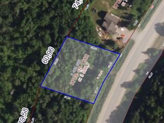 Terrain à vendre à Gracefield, Outaouais, Chemin de la Traverse-de-Blue Sea, 25157172 - Centris.ca