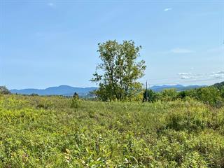Terrain à vendre à Cowansville, Montérégie, Rue de Sweetsburg, 13844336 - Centris.ca