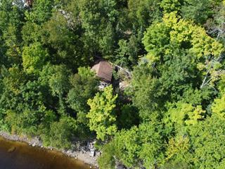 Maison à vendre à Notre-Dame-du-Laus, Laurentides, 118, Chemin des Lys, 26754648 - Centris.ca
