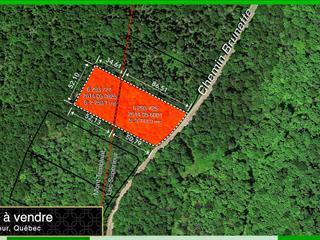 Terrain à vendre à Lac-Supérieur, Laurentides, Chemin  Brunette, 24813748 - Centris.ca