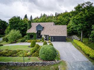 Maison à vendre à Thetford Mines, Chaudière-Appalaches, 1591, Chemin  Beausoleil, 19259249 - Centris.ca