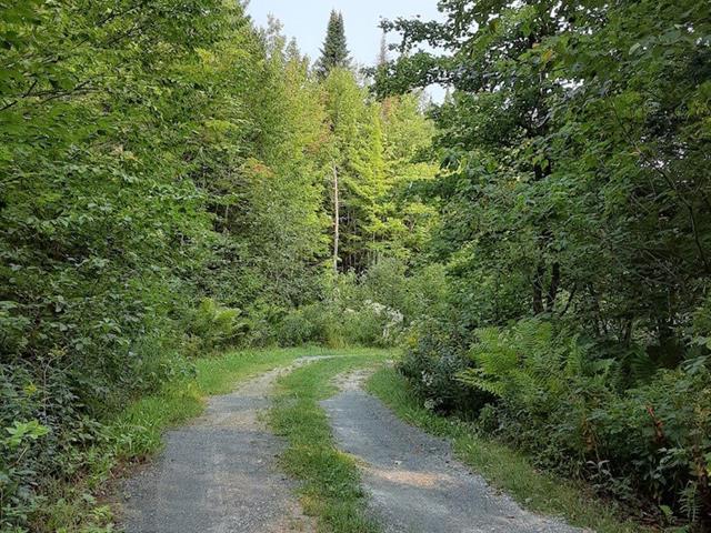 Terre à vendre à Disraeli - Paroisse, Chaudière-Appalaches, 1900, Route  263, 20122509 - Centris.ca