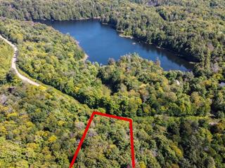 Land for sale in Wentworth, Laurentides, Chemin  Salzbourg Ouest, 13335376 - Centris.ca