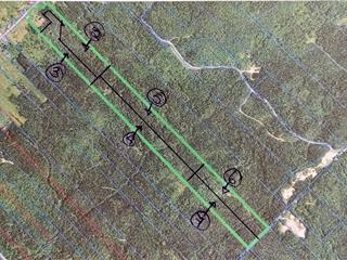 Terre à vendre à Sainte-Euphémie-sur-Rivière-du-Sud, Chaudière-Appalaches, Rang  Sainte-Anne Est, 19487707 - Centris.ca