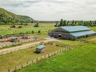 Hobby farm for sale in Pontiac, Outaouais, 1877, Chemin de la Montagne, 26266467 - Centris.ca