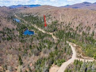 Terrain à vendre à Lac-Supérieur, Laurentides, Montée  Brien, 20135200 - Centris.ca