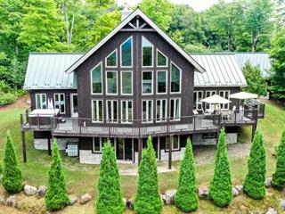 Maison à vendre à Lac-Supérieur, Laurentides, 113, Chemin des Roseaux, 15234044 - Centris.ca