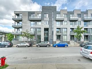 Loft / Studio à louer à Montréal (Ville-Marie), Montréal (Île), 363, Rue  Saint-Hubert, app. 106, 14265635 - Centris.ca