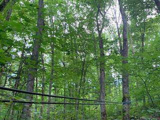Terre à vendre à Grand-Remous, Outaouais, 106Z, Chemin des Érables, 26999841 - Centris.ca