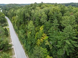 Terrain à vendre à Notre-Dame-de-Bonsecours, Outaouais, 1014, Côte  Angèle, 14508726 - Centris.ca
