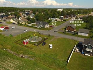 Terrain à vendre à Saint-Nazaire, Saguenay/Lac-Saint-Jean, 250, Rue des Merisiers, 14977484 - Centris.ca