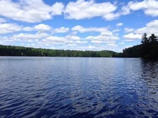 Lot for sale in Gore, Laurentides, Chemin du Lac-Sir-John, 14041960 - Centris.ca