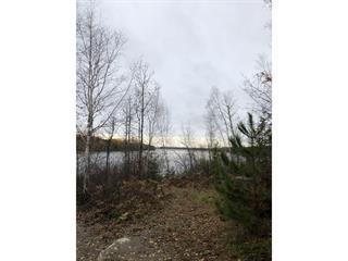 Terrain à vendre à Sainte-Monique (Saguenay/Lac-Saint-Jean), Saguenay/Lac-Saint-Jean, Rang 6 Rivière Péribonka, 23236919 - Centris.ca