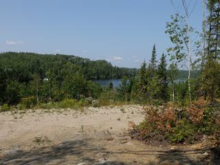 Terrain à vendre à Sainte-Monique (Saguenay/Lac-Saint-Jean), Saguenay/Lac-Saint-Jean, Chemin des Trois-Baies, 14693622 - Centris.ca