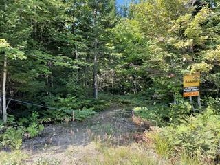 Terrain à vendre à Chertsey, Lanaudière, Chemin du Domaine-des-Sentiers, 16037222 - Centris.ca