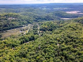 Terrain à vendre à Val-des-Monts, Outaouais, 65, Chemin  Buisson, 23165063 - Centris.ca