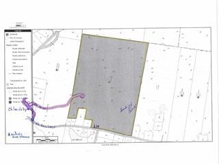 Land for sale in Saint-Faustin/Lac-Carré, Laurentides, Chemin des Lacs, 13534302 - Centris.ca