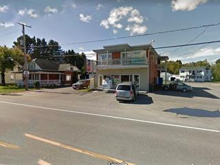 Bâtisse commerciale à vendre à Hérouxville, Mauricie, 341 - 343, Route  153, 26026863 - Centris.ca