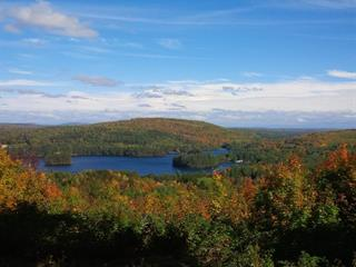 Lot for sale in Otter Lake, Outaouais, 80, Chemin du Rang-A, 24983420 - Centris.ca