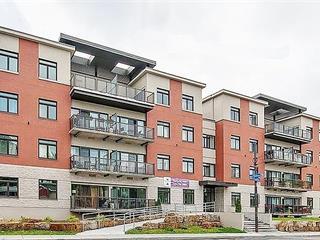 Condo / Apartment for rent in Laval (Laval-des-Rapides), Laval, 346, Rue  Laurier, apt. 406, 26447359 - Centris.ca